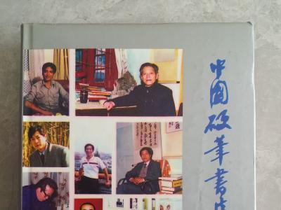 岸柳简介及作品被《中国硬笔书法家辞典》收录